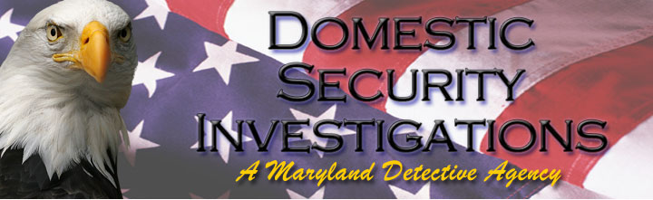 Logo: Domestic Security Investigations (DSI)